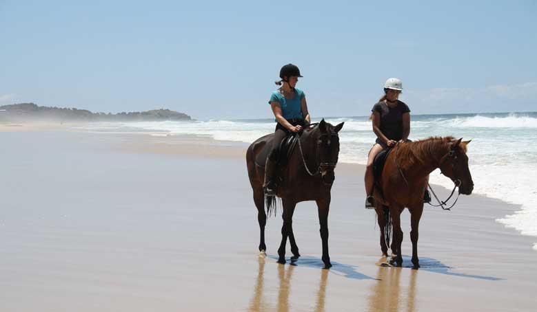 Beach Riding On The North Shore Port Macquarie Horse Riding
