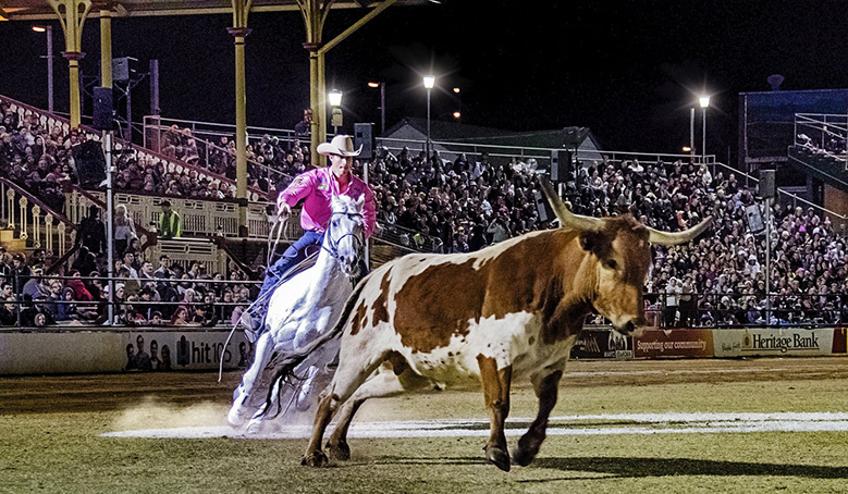 Wauchope-Show-Society-by-Todd-Rothe.jpg#asset:342735