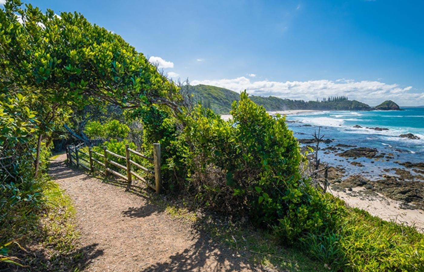 Coastal Walk Arch At Shelly Beach By Matt Cramer