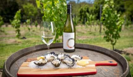 Oysters In The Vines At Cassegrain By Lindsay Moller